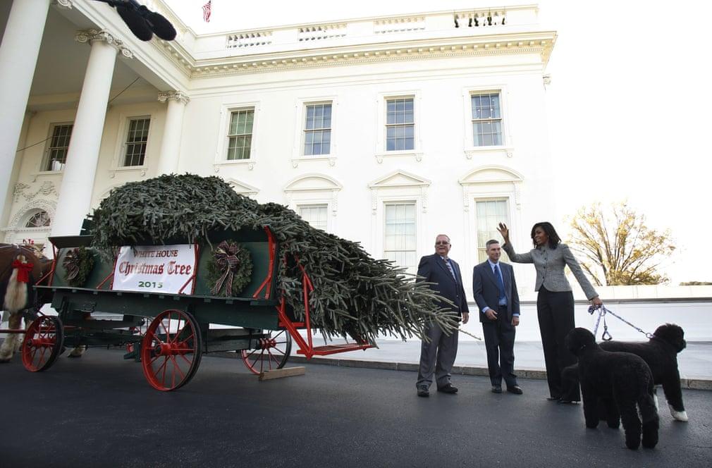 ميشيل أوباما تستقبل شجرة الكريسماس لعام 2015