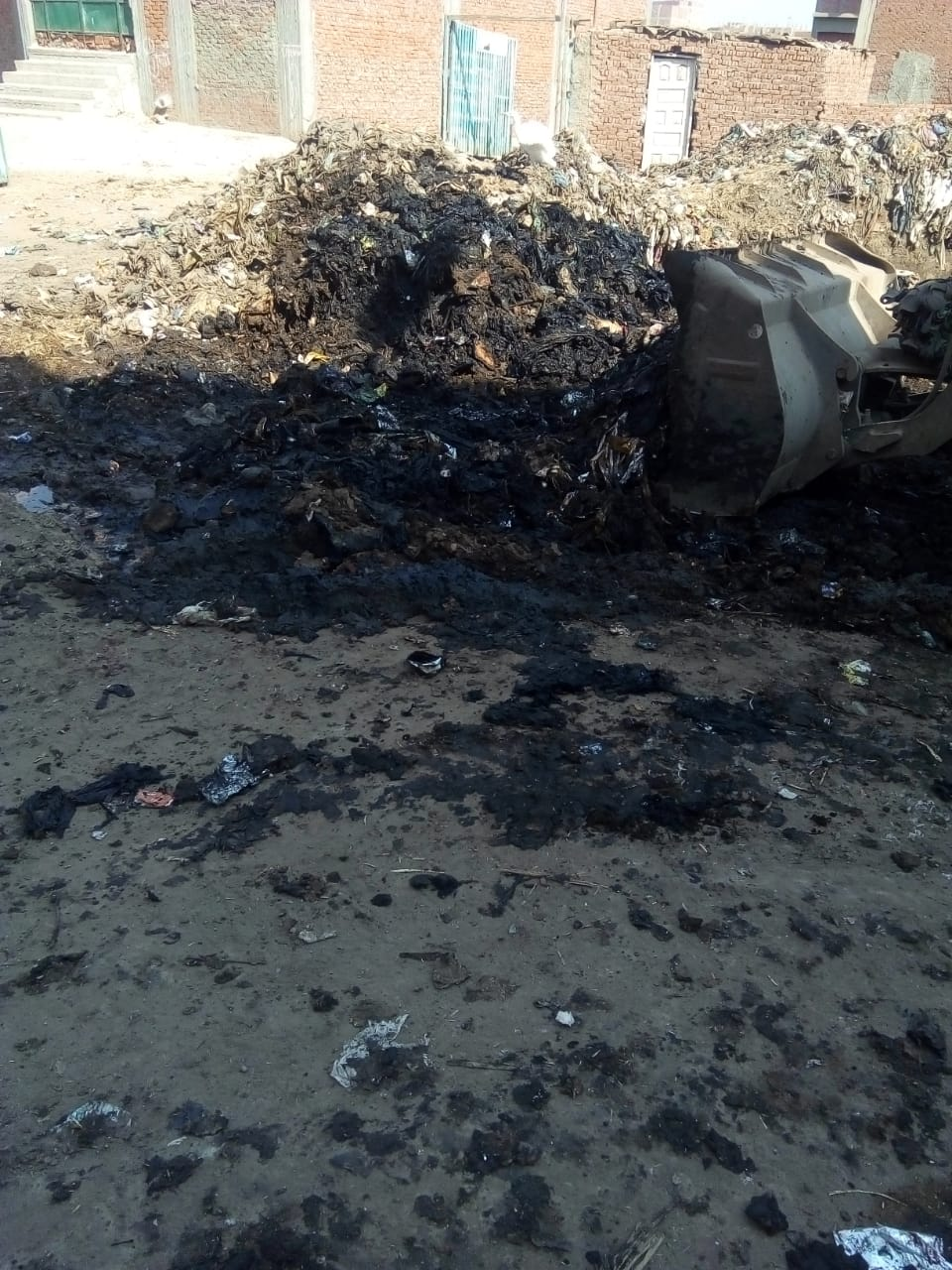 رفع القمامة من أمام مدرسة بشبين القناطر (6)