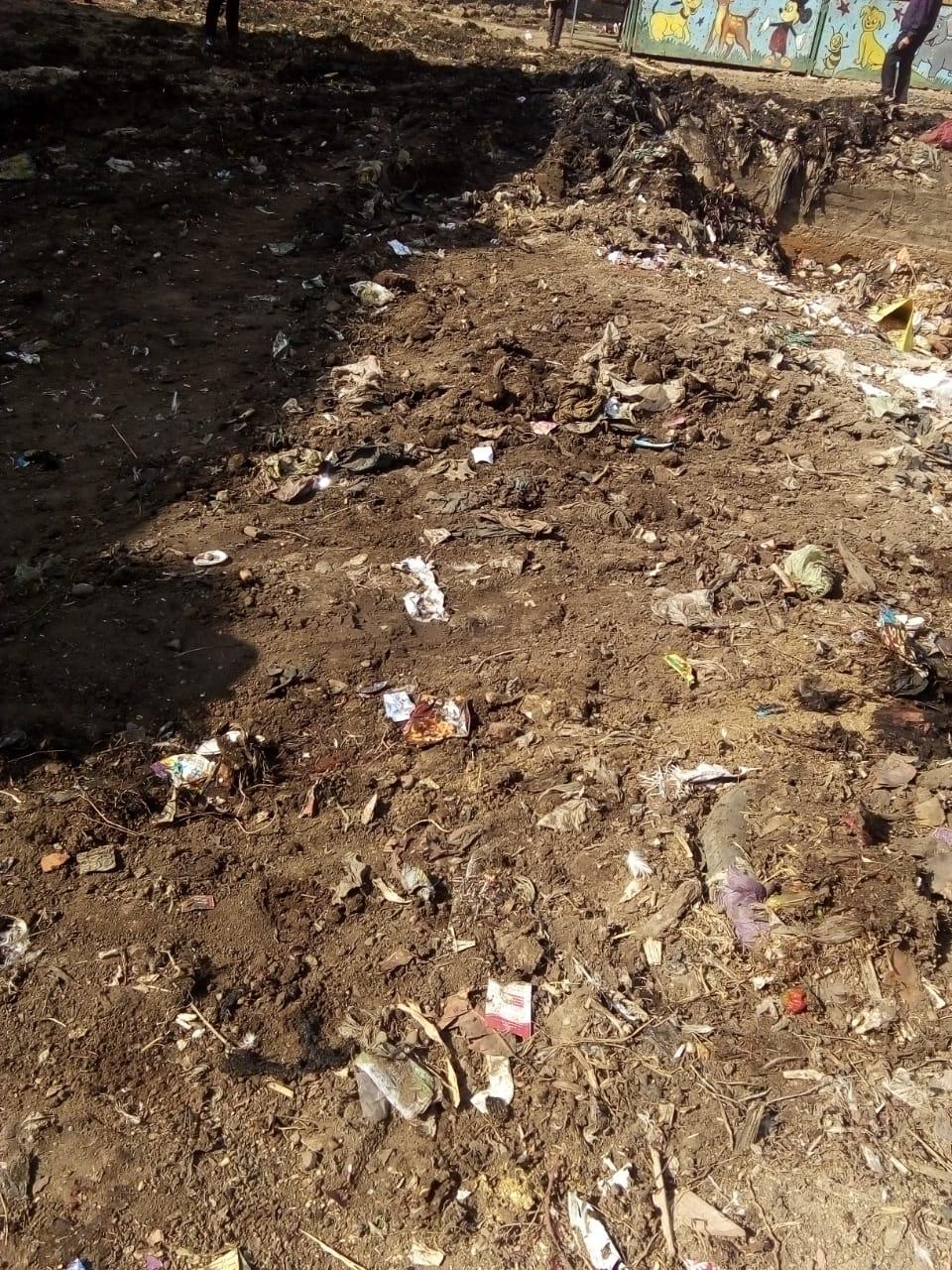 رفع القمامة من أمام مدرسة بشبين القناطر (4)