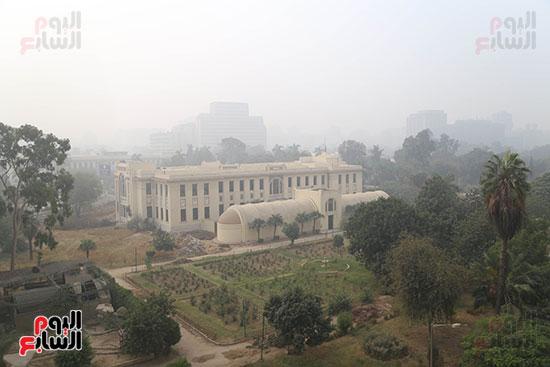 صور شبورة كثيفة تغطى سماء القاهرة والجيزة (12)