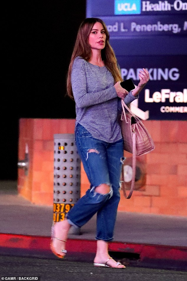 5866418-6361519-Keeping_busy_Sofia_Vergara_rocked_a_casual_figure_wearing_denim_-a-58_1541567787337
