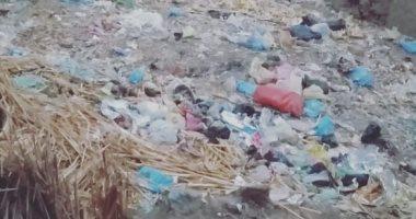 القمامة بقرية ميت البيضاء بالمنوفية