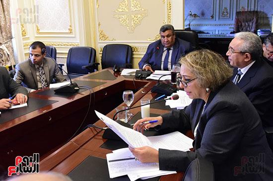 لجنة الخطة والموازنة (9)