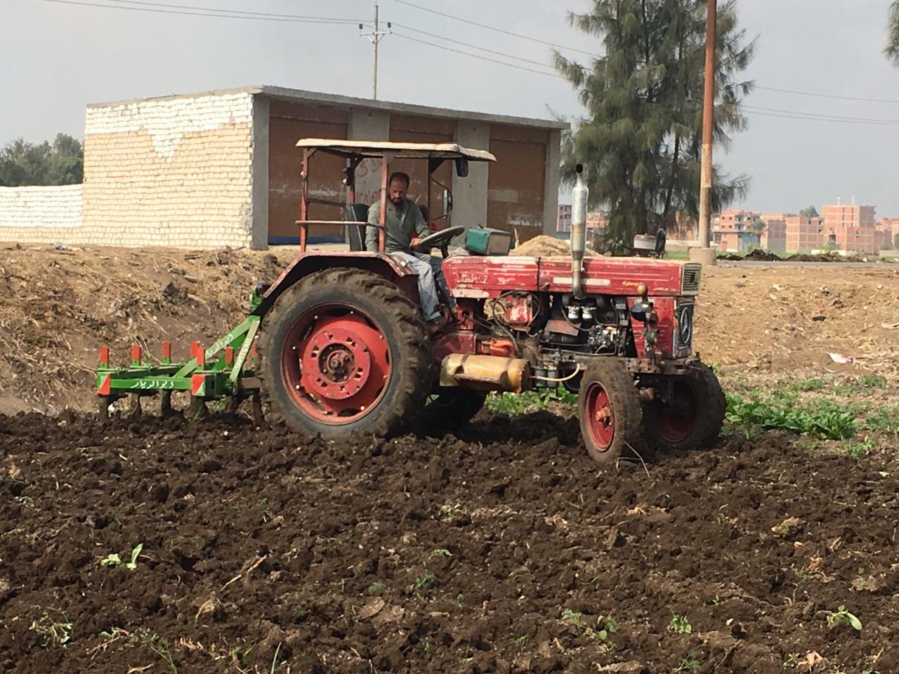 اراء المزارعين والفلاحين بمباراة الاهلى  (7)