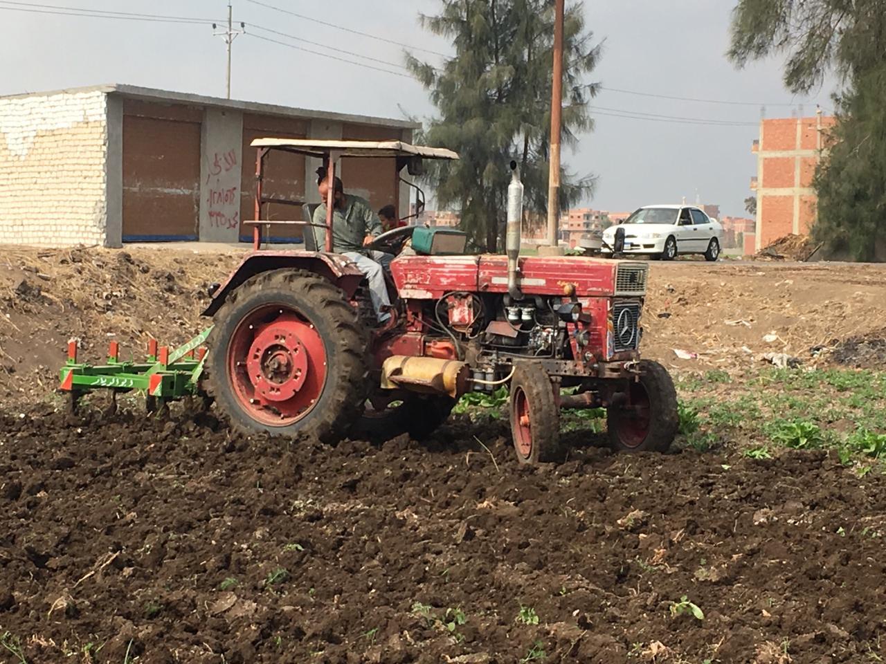 اراء المزارعين والفلاحين بمباراة الاهلى  (6)
