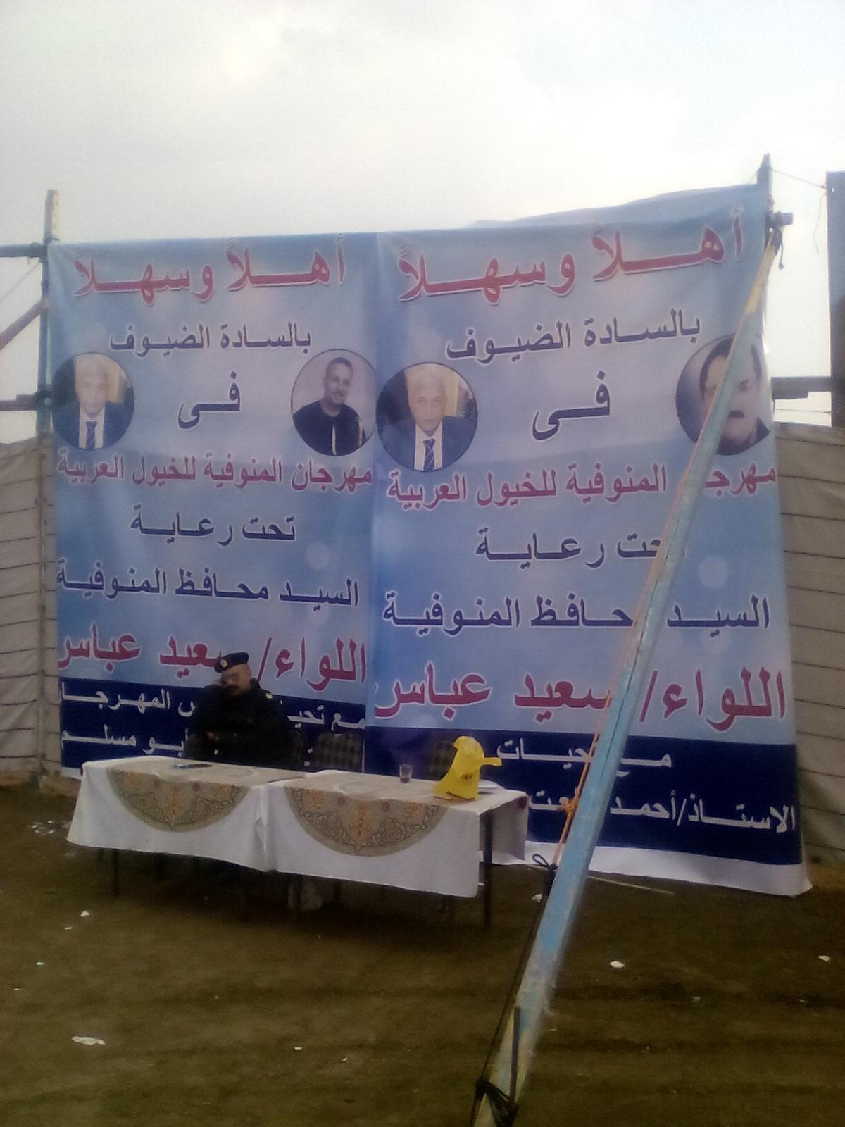 مهرجان الخيول العربية  (2)