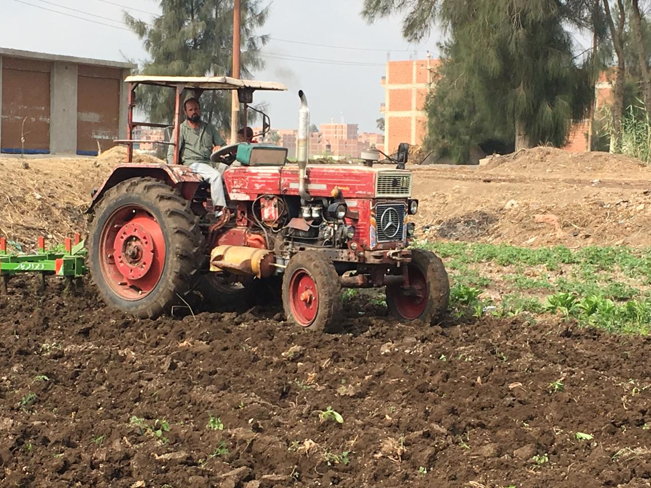اراء المزارعين والفلاحين بمباراة الاهلى  (11)