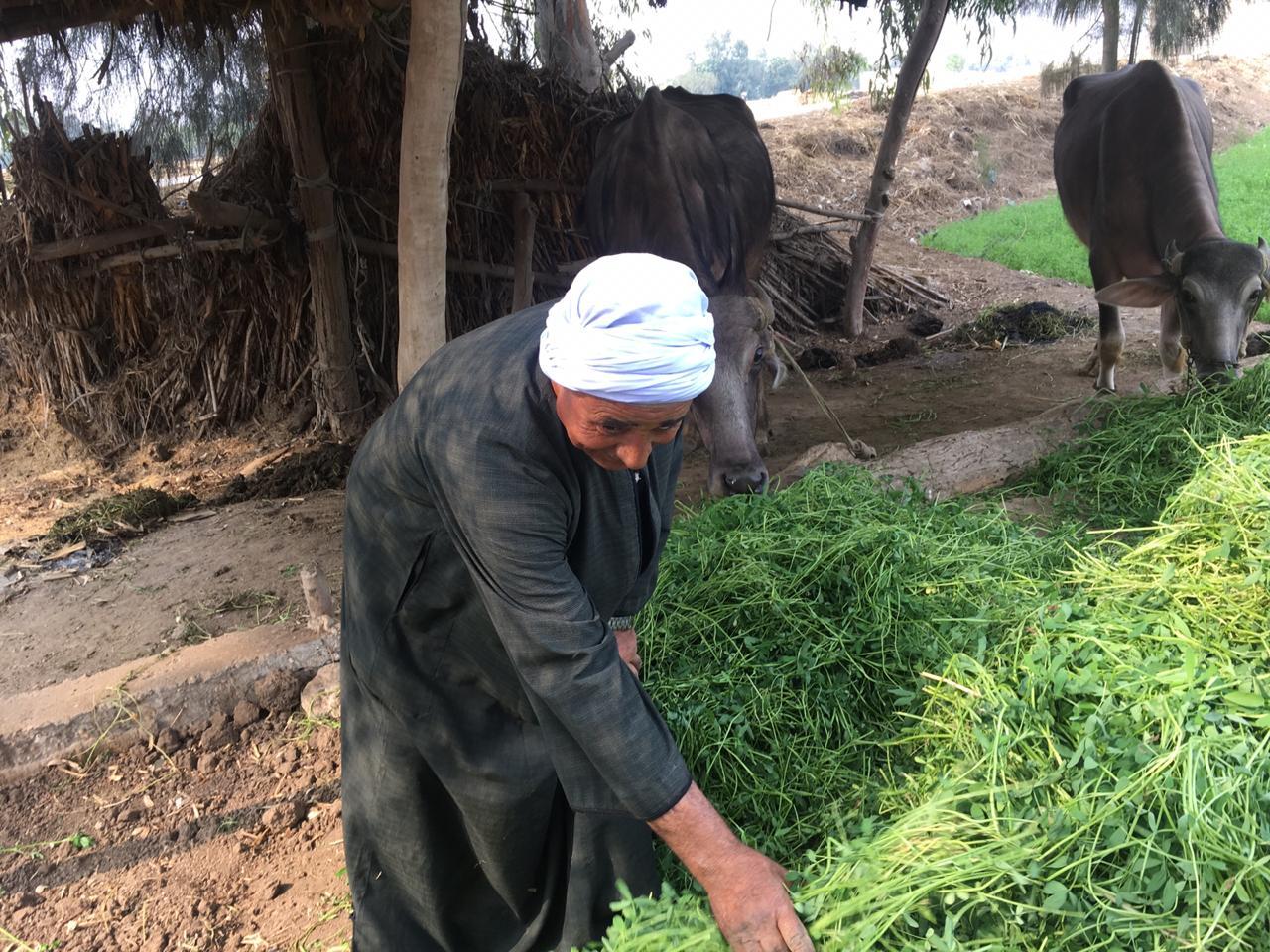 اراء المزارعين والفلاحين بمباراة الاهلى  (8)