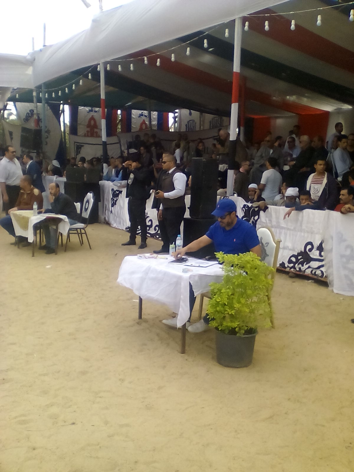 مهرجان الخيول العربية  (5)
