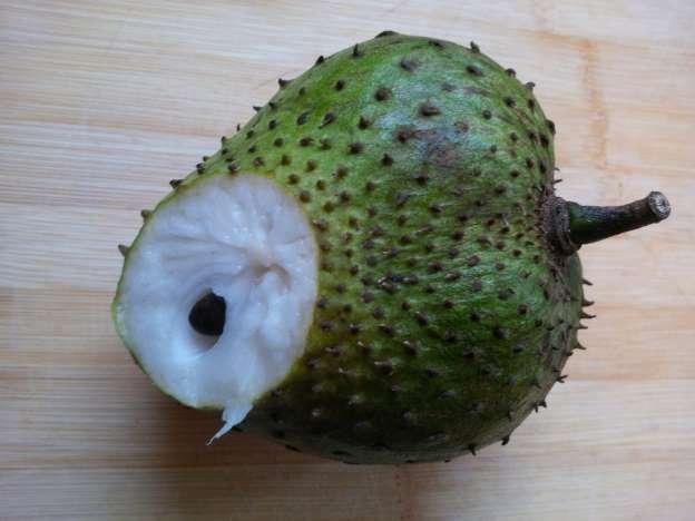 فاكهة القشطة3