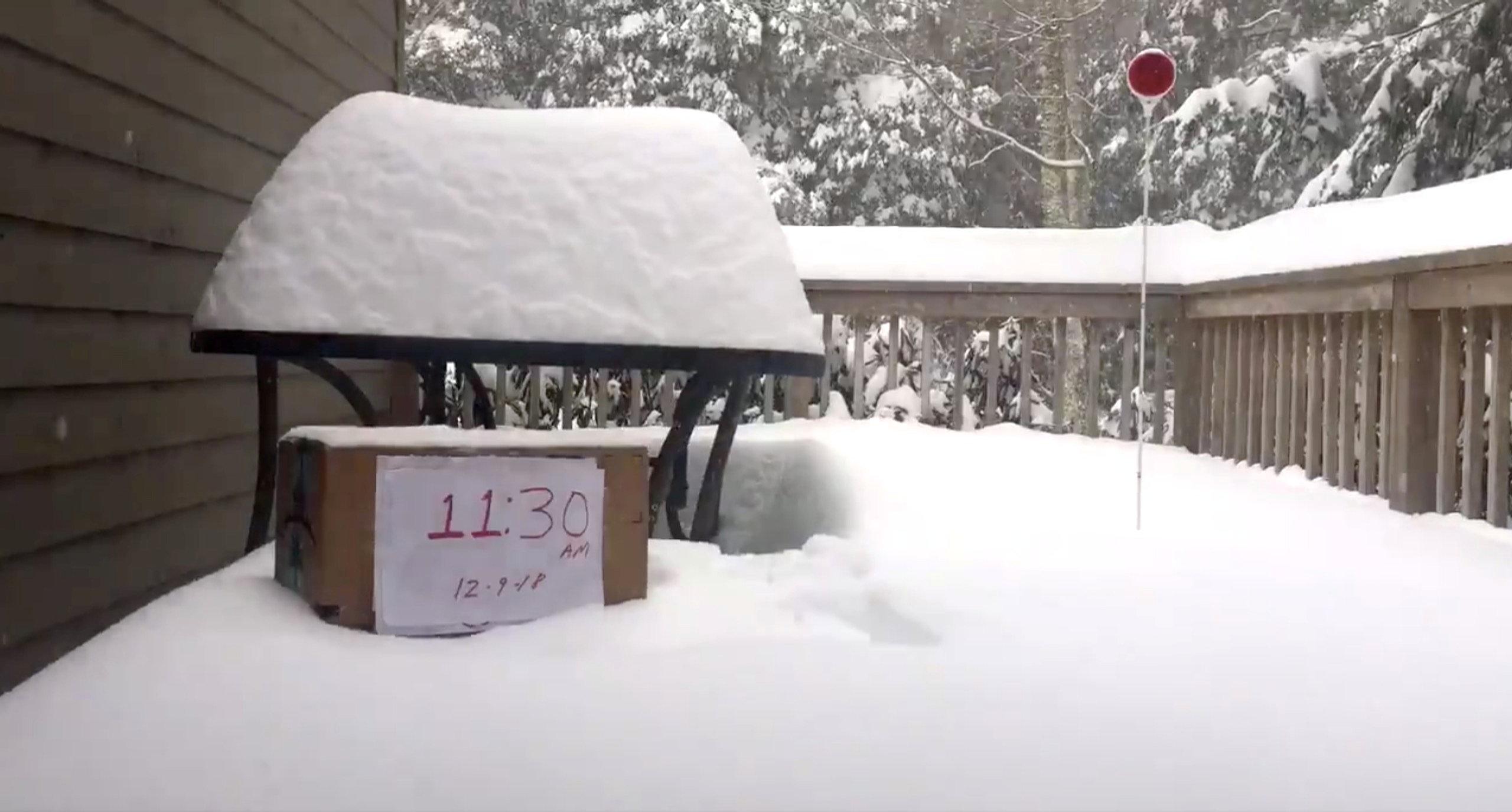 تساقط الثلوج بسبب الموجة الباردة فى أمريكا (2)