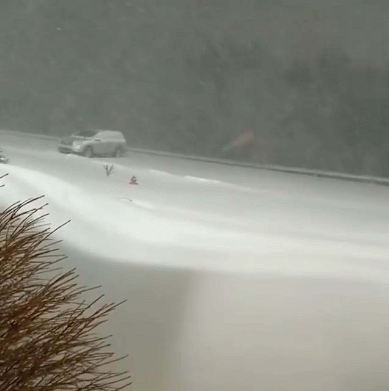 تساقط الثلوج بسبب الموجة الباردة فى أمريكا (1)
