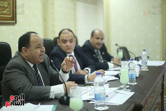 صور لجنة الشئون الاقتصادية  (8)