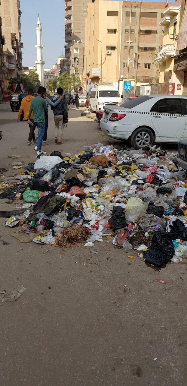 القمامة فى منطقة أثرية بميدان المسلة القديم فى المطرية (4)