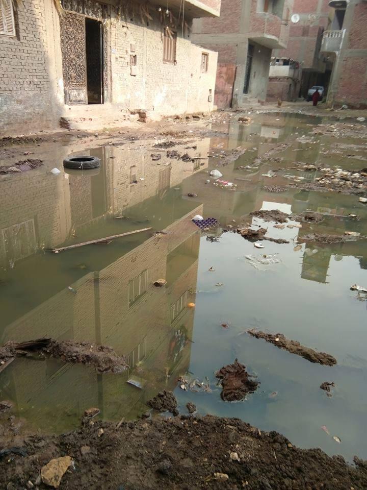مياه الصرف تحاصر سكان شارع كامل السبكى  (3)