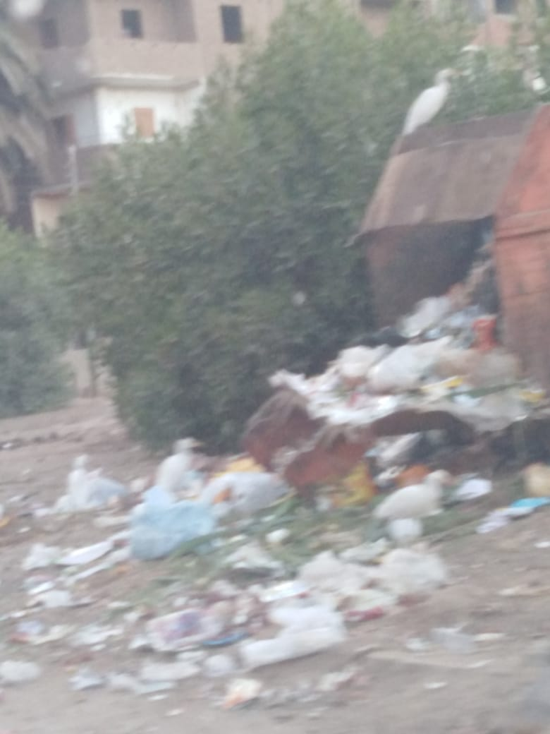 القمامة فى مدينة سوهاج (2)