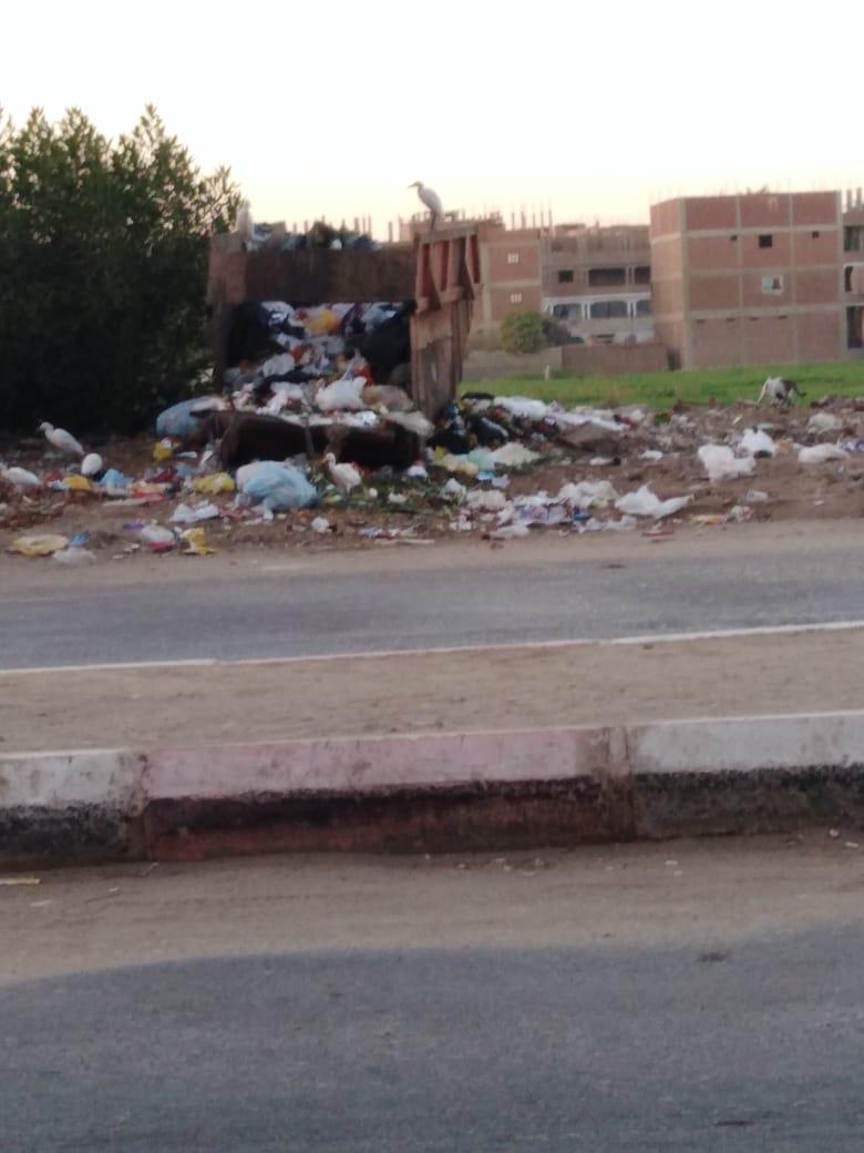 القمامه فى مدينة سوهاج