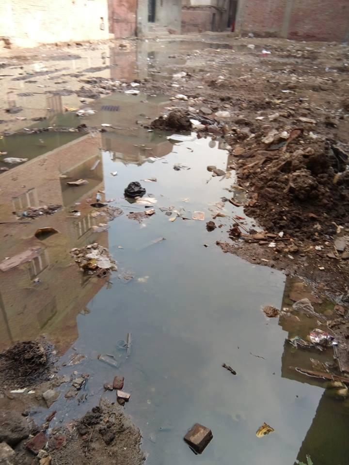 مياه الصرف تحاصر سكان شارع كامل السبكى  (1)