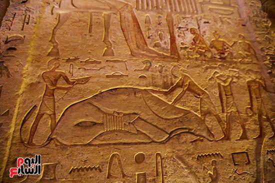 اكتشاف مقبرة بالهرم (28)