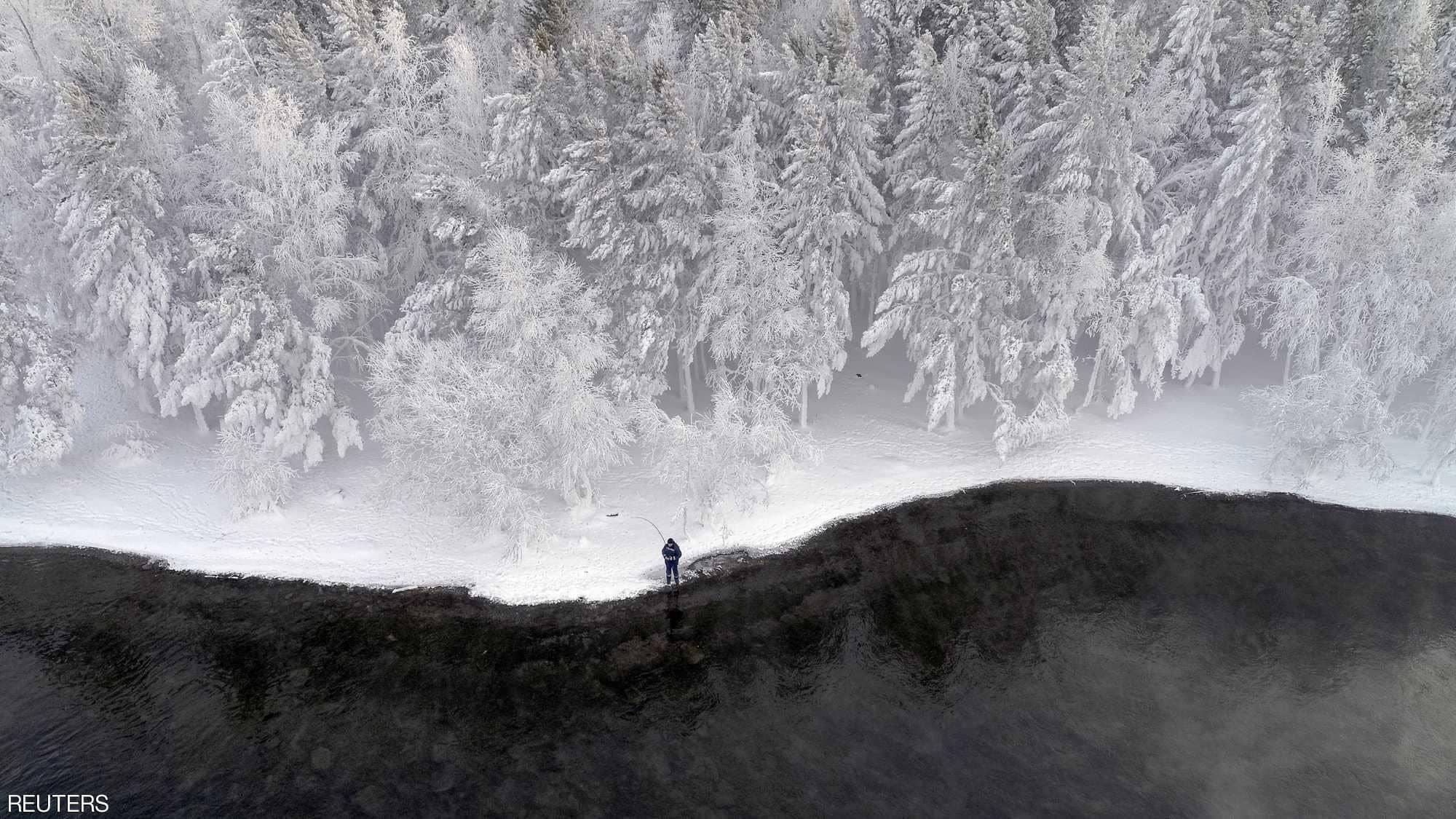 الأشجار المتجمدة فى روسيا