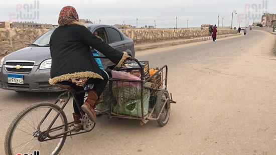 حنان-عبد-اللطيف..-أول-امرأة-تقوم-العجلة-بحثا-عن-الرزق-فى-العريش-(12)