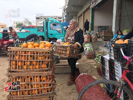 حنان-عبد-اللطيف..-أول-امرأة-تقوم-العجلة-بحثا-عن-الرزق-فى-العريش-(9)