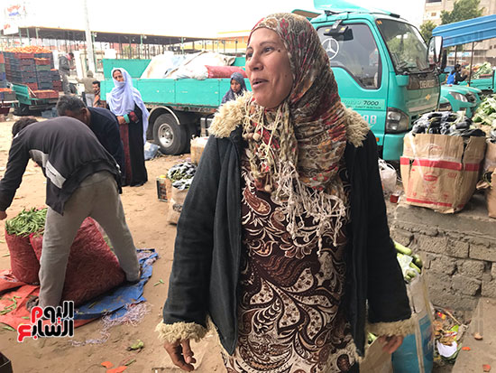 حنان-عبد-اللطيف..-أول-امرأة-تقوم-العجلة-بحثا-عن-الرزق-فى-العريش-(4)