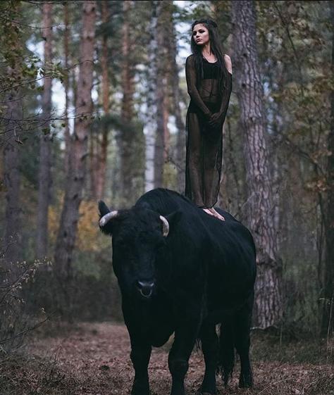 حماية الطبيعة