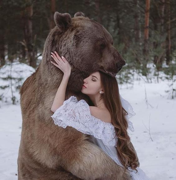 الدب ستيبان