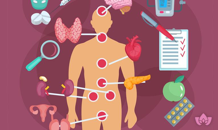 كيف تتحكم الغدد الصماء فى جسمك