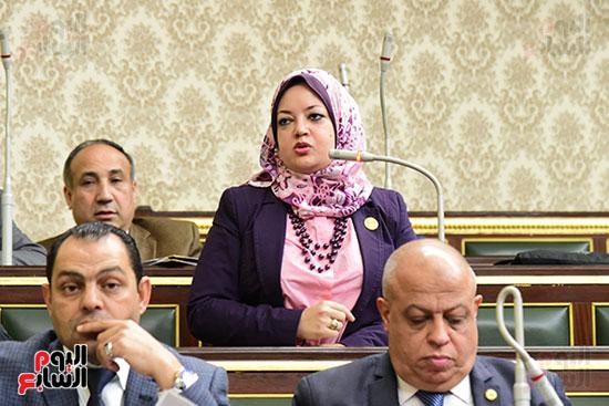 الجلسة العامة ، مجلس النواب (16)