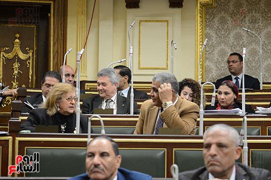 الجلسة العامة ، مجلس النواب (11)