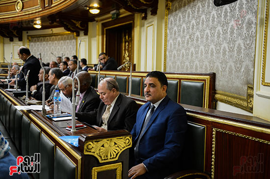 الجلسة العامة ، مجلس النواب (13)