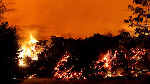 بركان كيلاويا (2)