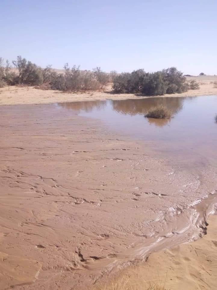 سواتر ترابية حول برك الصرف الصحى بمدينة الخارجة (6)