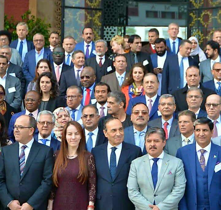 المشاركة المصرية