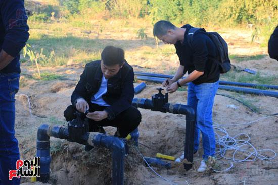 صور.. نظام جديد للرى بواسطة الإنترنت فى كلية الزراعة بأسوان (1)