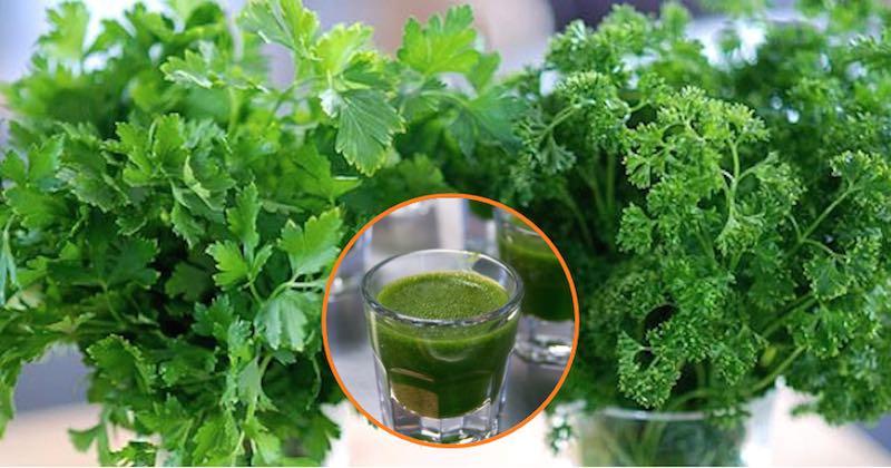 cilantro-parsley-juice