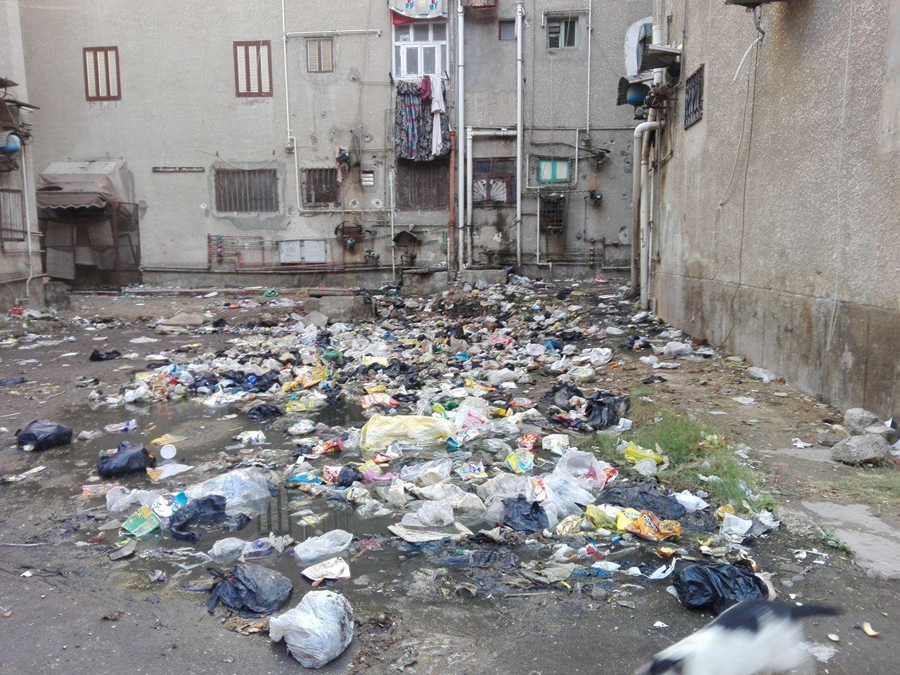 القمامة ومياه الصرف الصحى