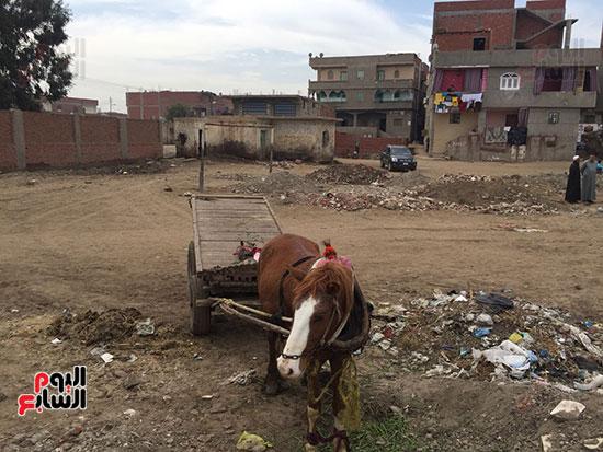 إهمال بمركز شباب محلة القصب (2)
