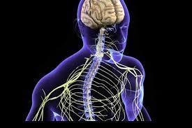 اسباب اصابة الاطراف العصبية