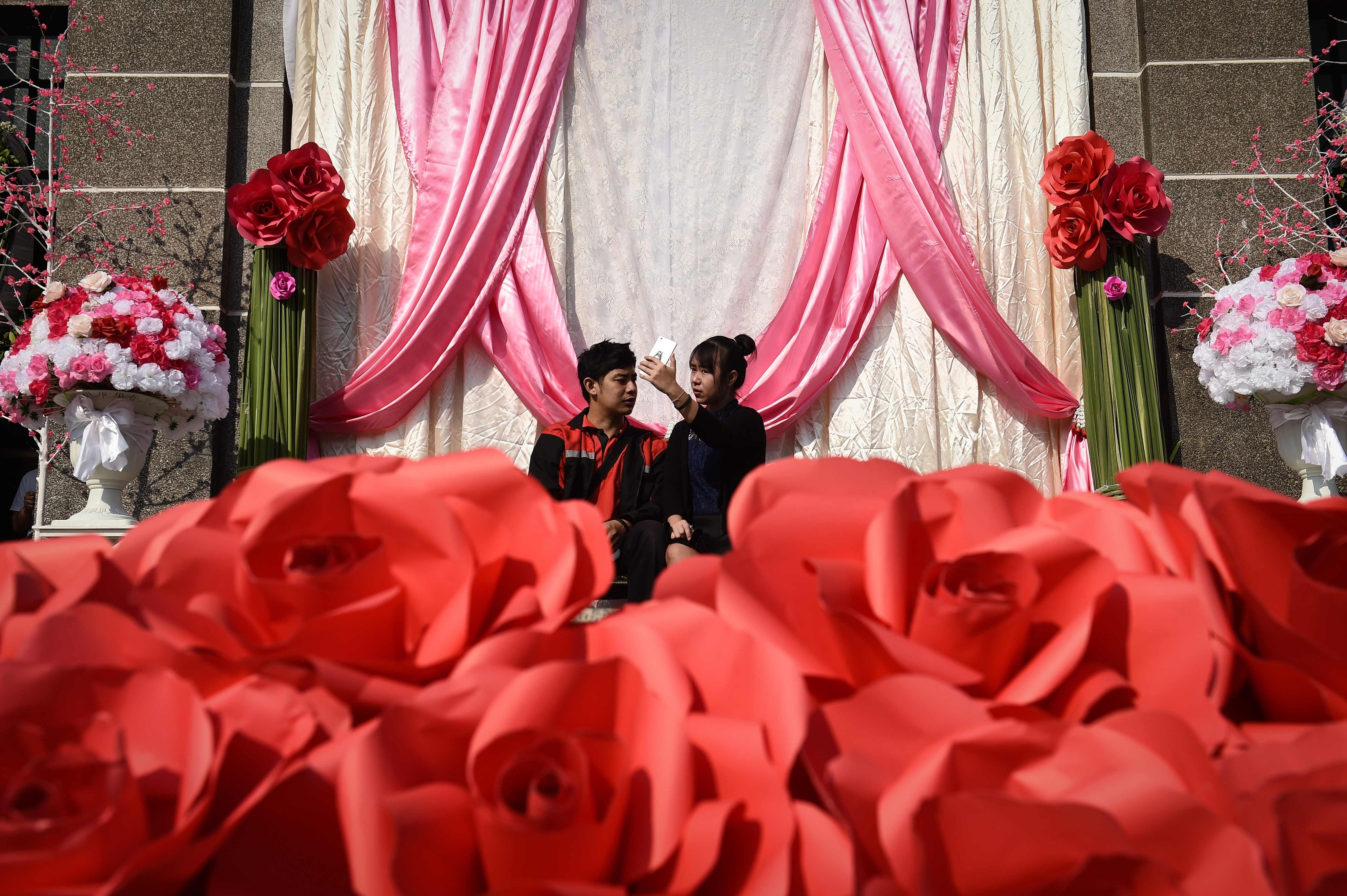 الورد الأحمر فى تايلاند