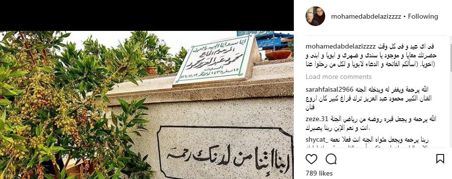 محمد محمود عبد العزيز