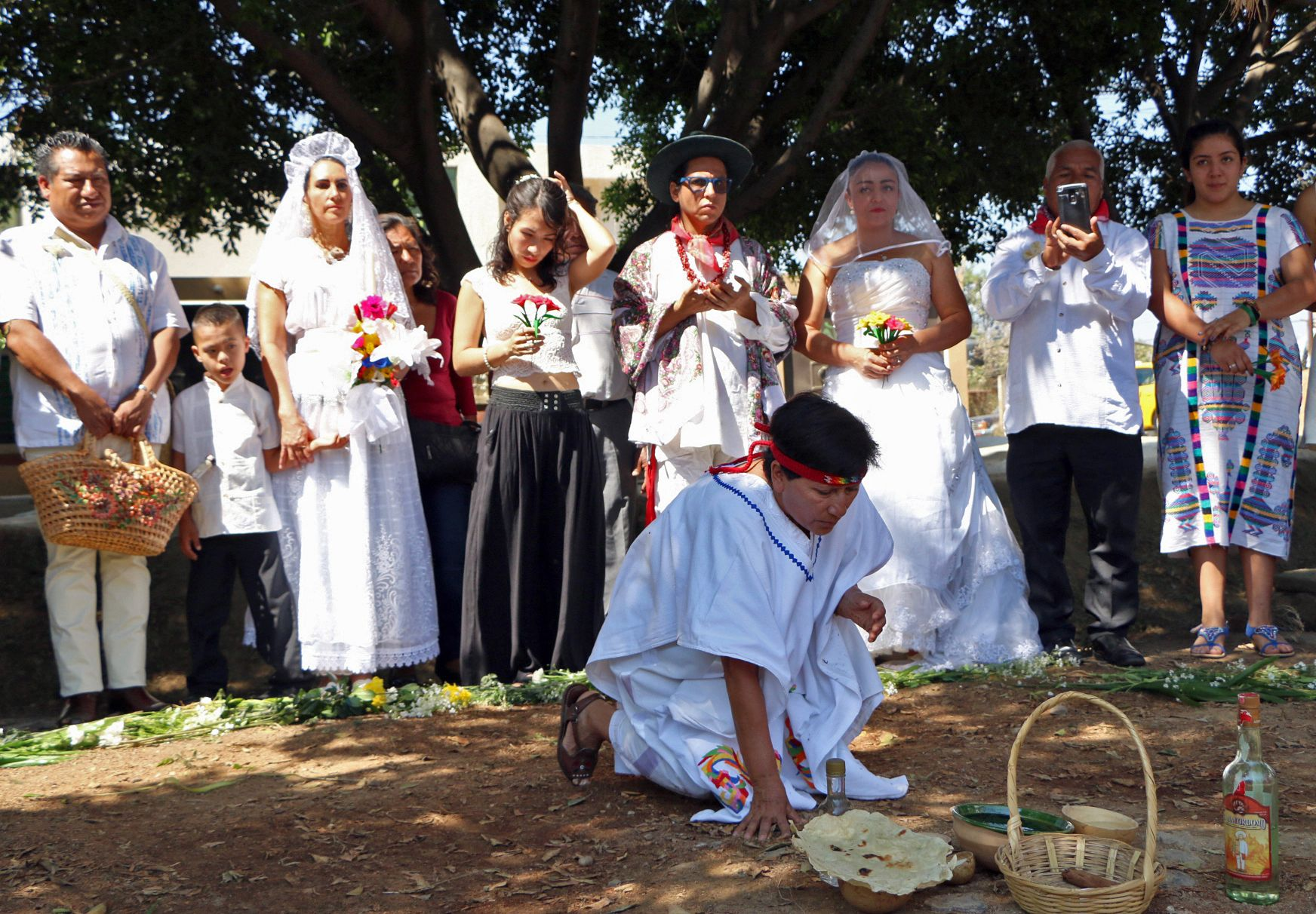مراسم الزواج من شجرة