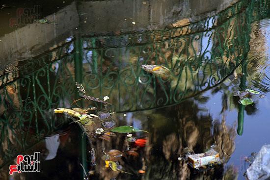 حديقة حيوان الجيزة (9)