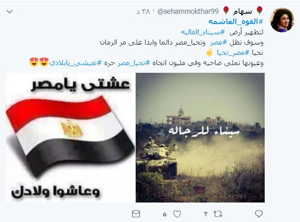 القوة الغاشمة لتطهير أرض سيناء الغالية