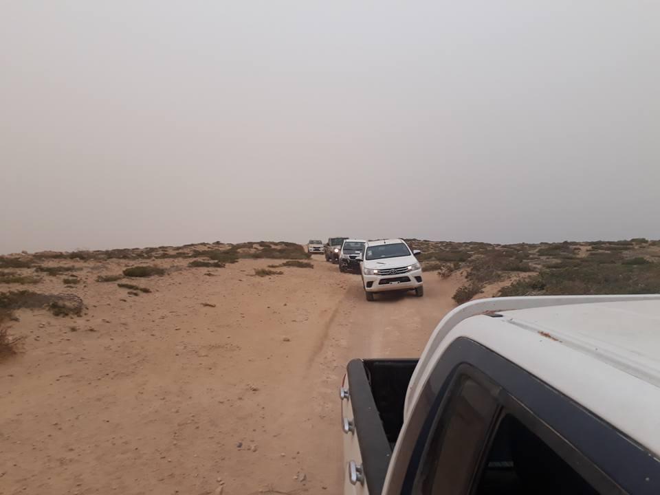 5- جانب من سيارات القوات الليبية