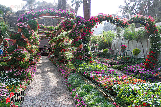 معرض زهور الربيع (2)