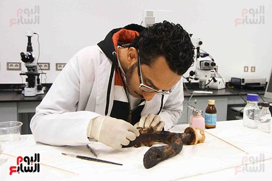 خلال-ترمميم-القطع-الأثرية-بالمتحف-المصرى-الكبير-(3)