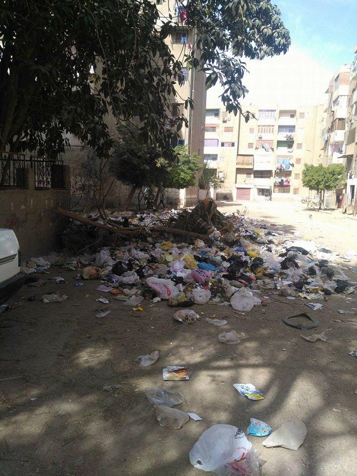 القمامة بالشارع
